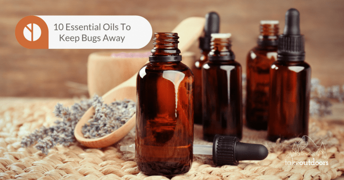 Featured Image Of Essential Oils To Keep Bugs Away